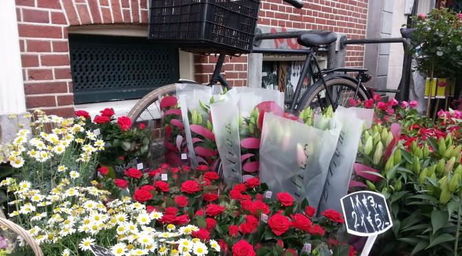 Transporte auf dem Fahrradsattel…